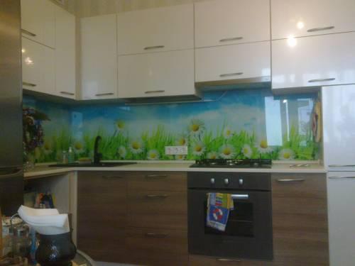 Кухня с ромашками стеклянные фартуки